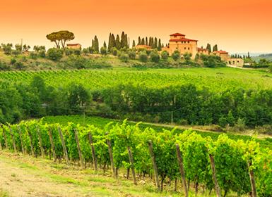 Toscana e a Arte Italiana Em Detalhe