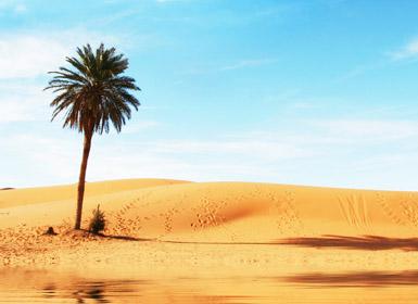 Marrocos: Escapadinha ao Deserto