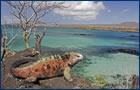 Ilhas Gal�pagos