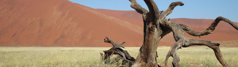 Namíbia: Namíbia com Walvis Bay, circuito clássico