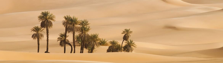 Emirados Árabes: Dubai com noite no deserto, estadia com visita