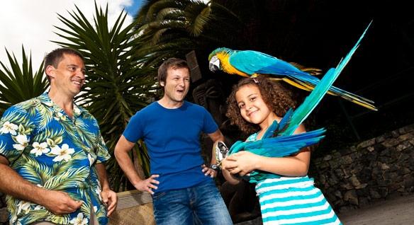 Aves do Paraíso