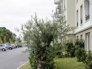 Appart'City Confort Marne La Vallée Val d'Europe (Ex Park&Suites)