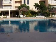 Salvia Cancun